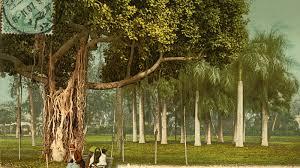 صورة قديمة لحديقة الأزبكية