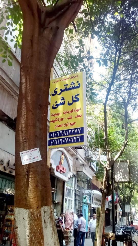 """""""نشتري كل شئ"""" كانت مُعلّقة بالتوازي على جميع أشجار شارع ٢٦ يوليو بالزمالك"""