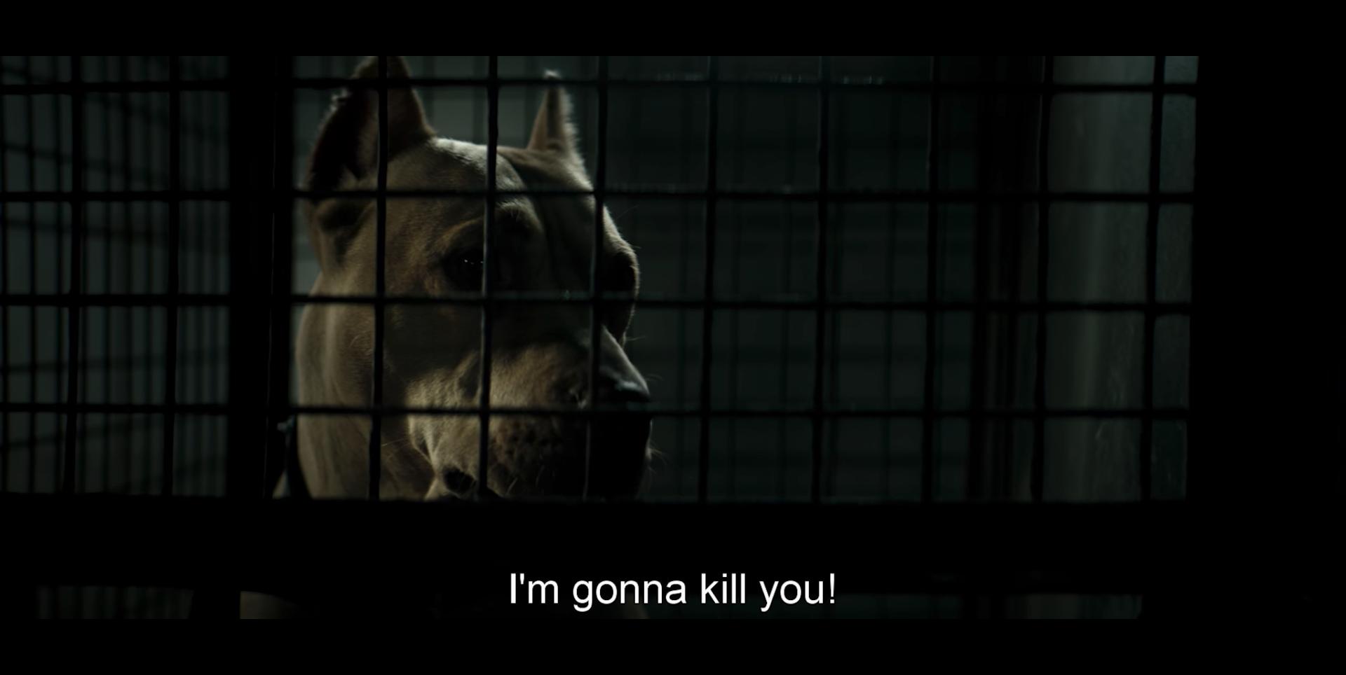 لقطة من فيلم Dogman